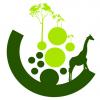 Imagem de Ecogreen Trilhas & Aventuras